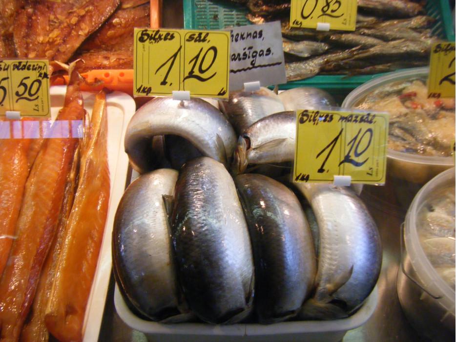 рыба Латвии